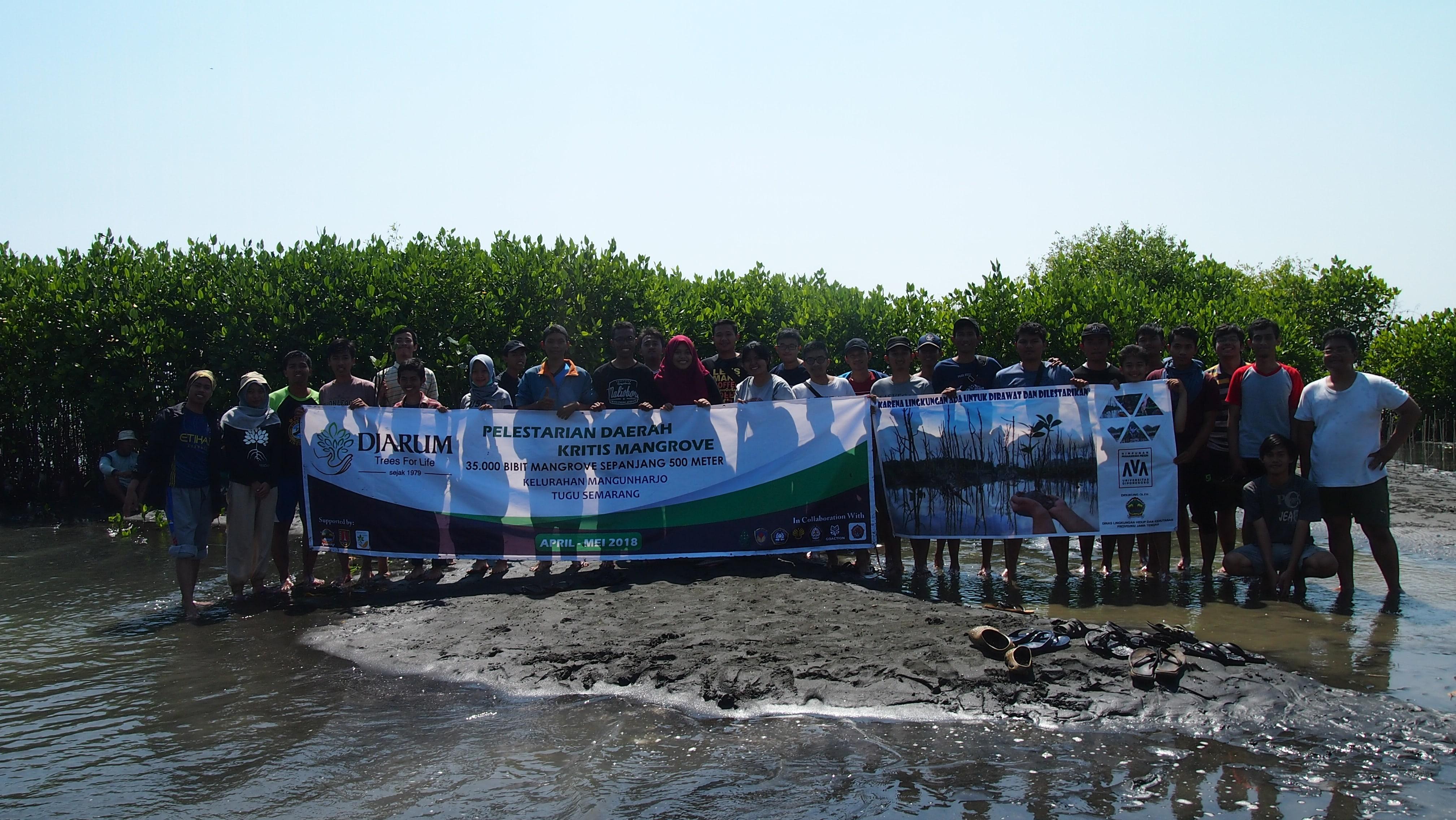 Penanaman 1000 Mangrove Mahasiswa Teknik Mesin Undip